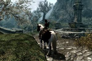 Лошадь - не только средство передвижения... а еще и способ грузоперемещения!