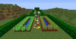 Пример ферм