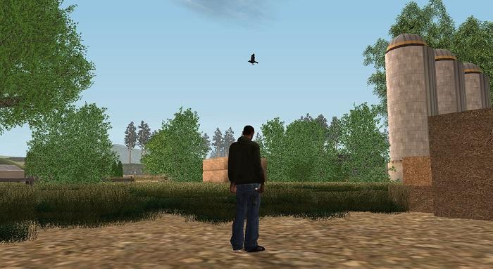 Издали птица видна также хорошо, как вблизи