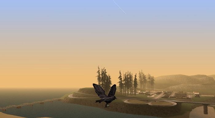 Ворон подлетает к реке